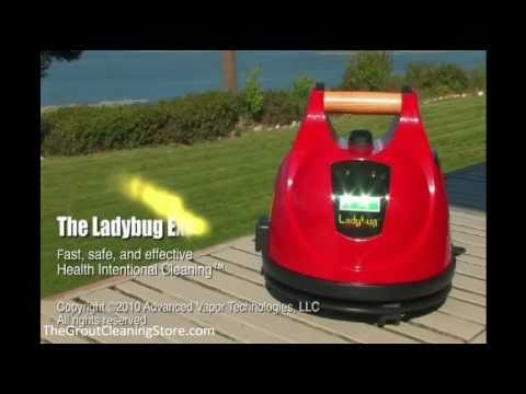Best Dry Steam Cleaner For Bed Bugs - Home Appliances |Dry Steamers For Bed Bugs