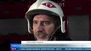 Новые детали страшного ДТП с автобусами под Воронежем