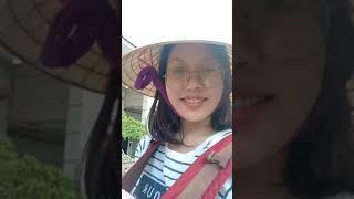 Giới thiệu Cây Chanh Siêu Khủng tại vườn nhà - Hạnh vũ