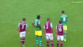 Animals On Field  Funny Football Moments :D