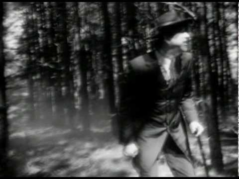 "Sparklehorse - ""Pig"" & ""Box Of Stars (Part One)"""