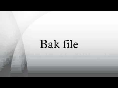 Bak file