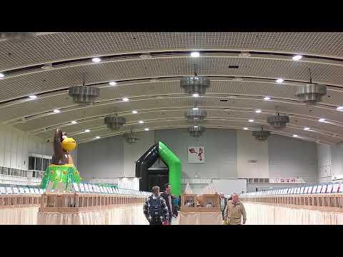 Rundgang über die Deutsche - Brieftauben - Messe 2018