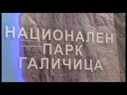 ТВМ Дневник 13.08.2016