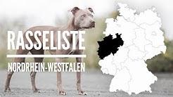 Hundeführerschein Pflicht 2019 Nrw
