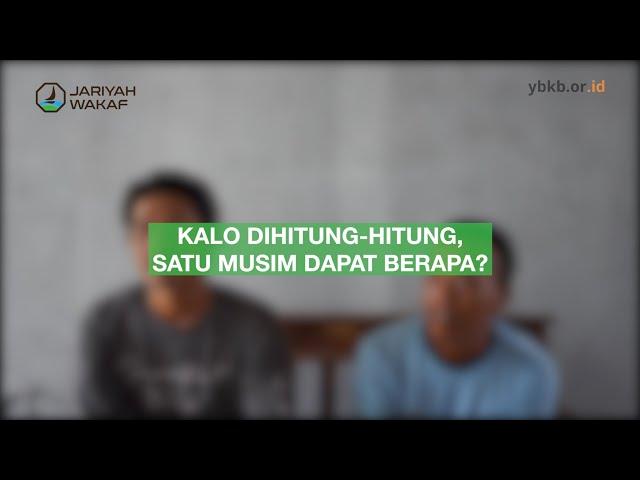 Cerita & Harapan Pak Tani - Lahan Pertanian Wakaf Produktif