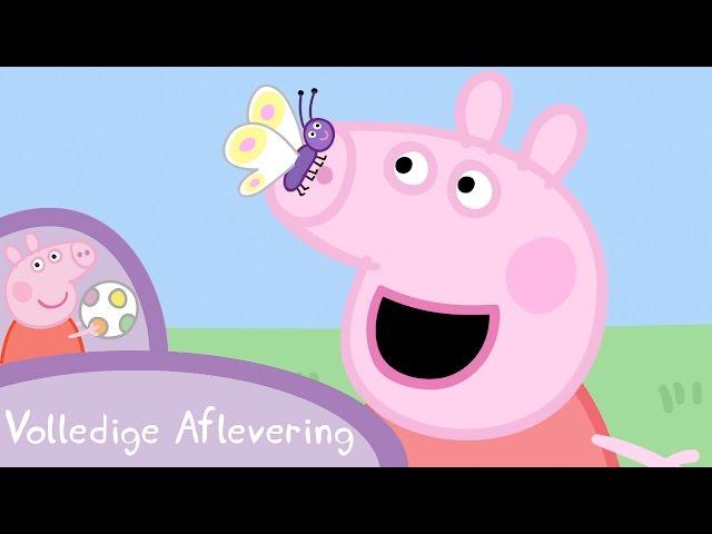 Peppa Pig Nederlands Compilatie Nieuwe Afleveringen | Kikkers, wormen en Vlinders | Tekenfilm