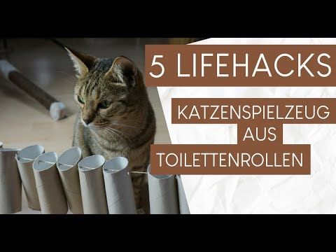 5 hacks katzenspielzeug aus klopapierrollen basteln youtube. Black Bedroom Furniture Sets. Home Design Ideas