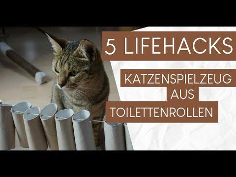 Extrem 5 Hacks: Katzenspielzeug aus Klopapierrollen basteln - YouTube CN02