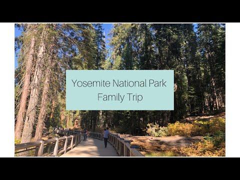 Tenaya Lodge Explorer Cabins / Yosemite National Park, CA│The Bright Bite
