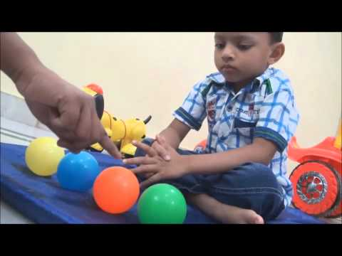 Montessori 3 Step Lesson Plan
