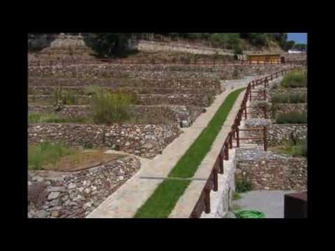 Vivaio Forestale Sicilia : Forestali news settore forestale programma regione sicilia