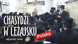 Baixar Niezwykly Swiat 4K - Polska - Chasydzi w Leżajsku