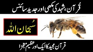 What Quran Says About Honey Bee - (Quran vs modern science Episode # 3)