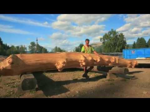 Canadian Log & Timber Frame Building - Enderby Tim Hortons Grand Opening