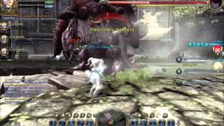 Dragon Nest - Tg vs Minotaur Nest = Abyss