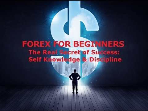 Forex Trading for Beginners - Learning to be a Disciplined Trader Best Tips