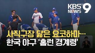 사직구장 닮은 요코하마…한국 야구 '홈런 경계령' / …