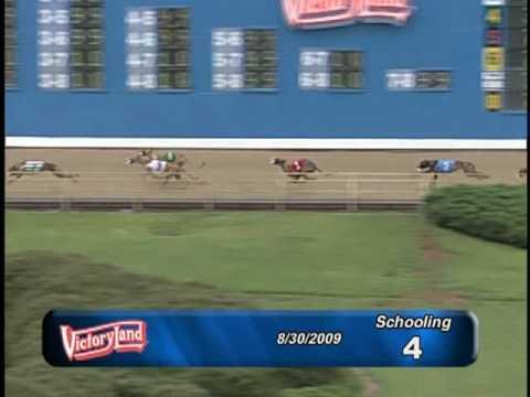 Victoryland 8/30/09 Schooling Race 4