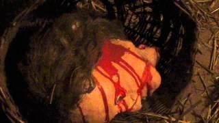 Камера пыток замка Локет