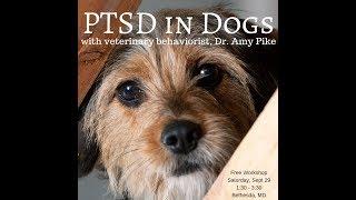 PTSD in Companion Animals  9/29/18 #ThanksToMaddie