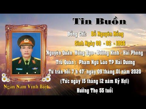 Le Tang Dong Chi Do Nguyen Hong HD 2020