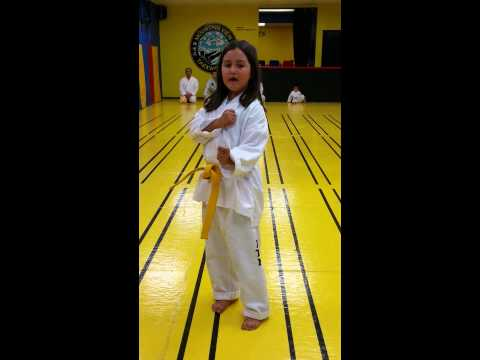 Mountain View Martial Arts & Fitness Meaning of Dan gun