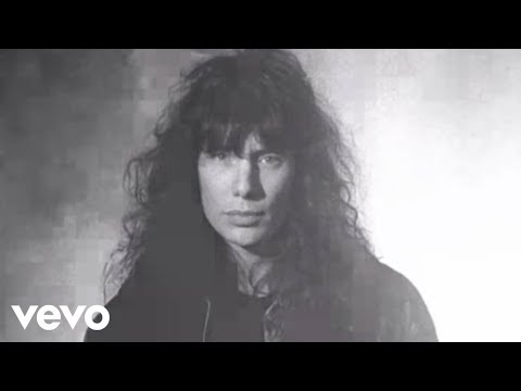 Mr. Big - Just Take My Heart (MV)