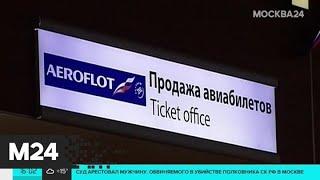 """Смотреть видео СК настаивает на аресте замгендиректора """"Аэрофлота"""" - Москва 24 онлайн"""