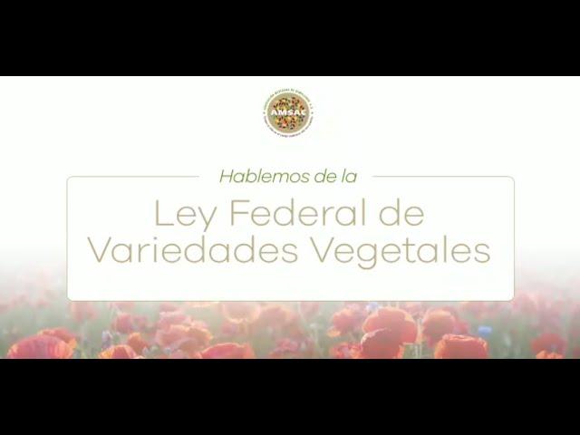 Hablemos sobre la actualización a la Ley Federal de Variedades Vegetales