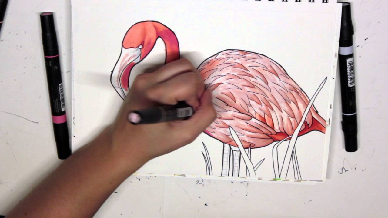 Flamingo Drawing - Coloring with Prismacolor Markers - YouTube