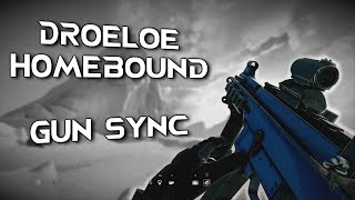 Rainbow Six Siege Gun Sync Droeloe - Homebound