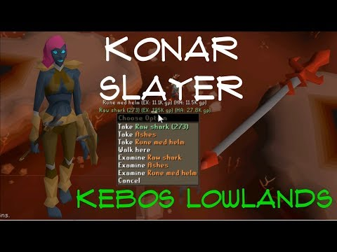 KONAR SLAYER. I HIT THE DROP TABLE...TWICE! Kebos Lowlands