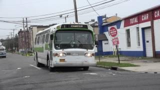 Diverse Fleet of Buses