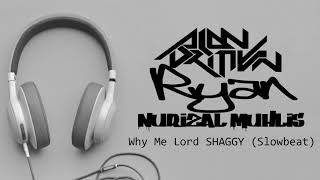 Why Me Lord_SHAGGY (Slowbeat)