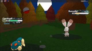 Playing Roblox on pokemon pc