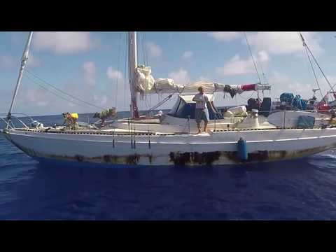 USS Ashland Rescues Two Mariners and Their Dogs Adrift At Sea