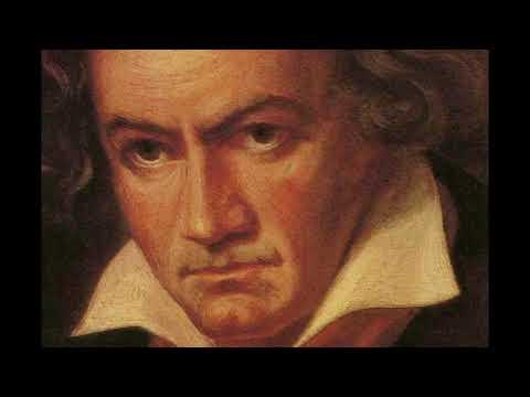 Beethoven - Piano Sonata No. 1 in F minor Op. 2 No. 1 - I, Allegro