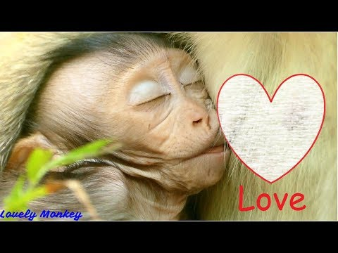 Million Love From Mom To Baby | Love Is Unlimited That Mean Love Is All Everything Baby Get From Mom