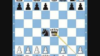 Chess Trap:  Blackburne Schilling Trap Video