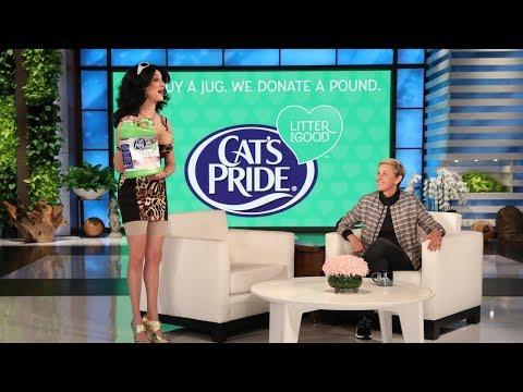 Ellen Rate My Cat: 2018 Cat Week Edition!