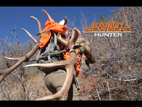 2016 Colorado Rifle Elk Hunt with Randy Newberg (S5 E6)