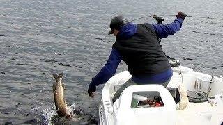 Рыбалка у мостика - ловля щуки