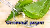 Отзыв Экстракт алоэ по Федорову - YouTube