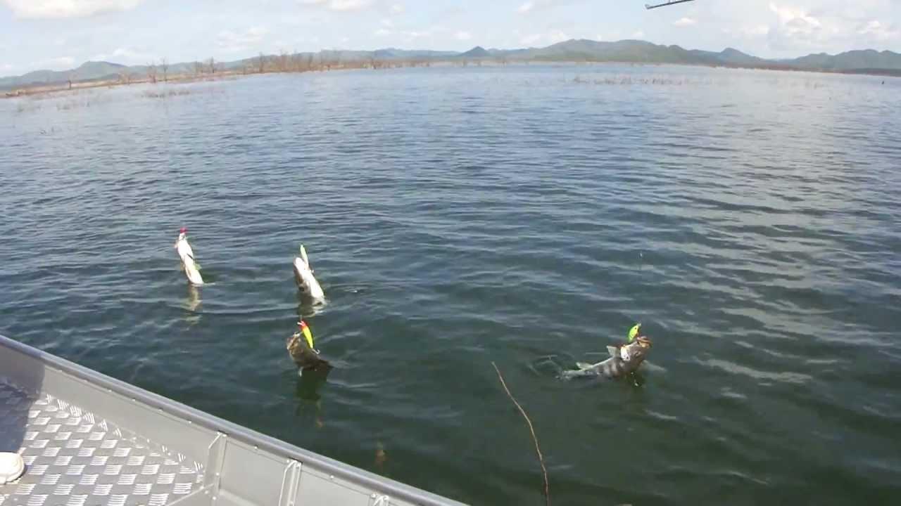 Dia de pesca - 4 7