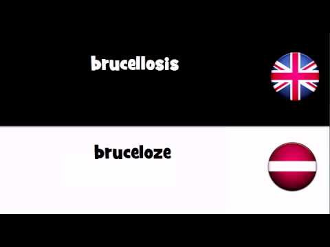 Say it in 20 languages # brucellosis