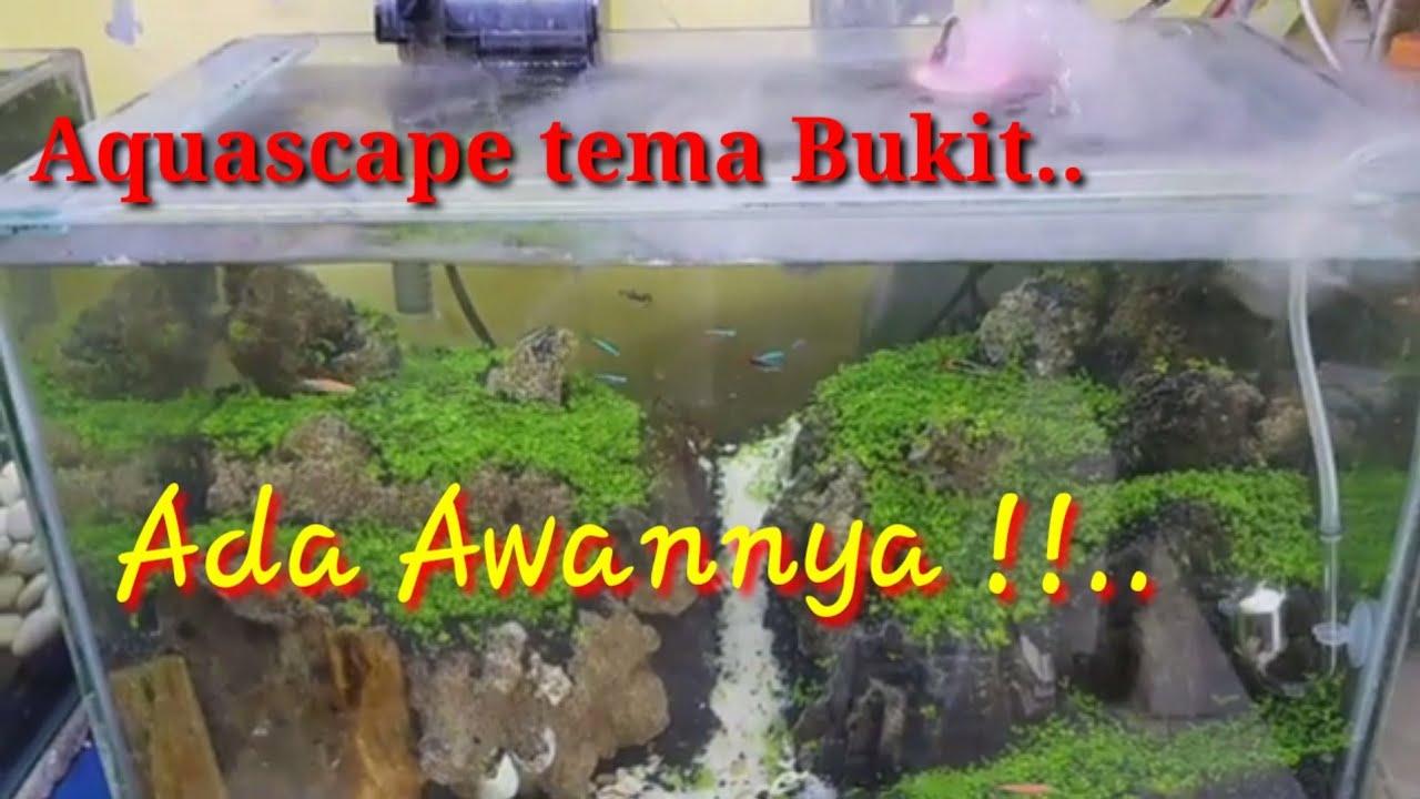 Tutorial membuat aquascape tema Bukit menggunakan carpet ...