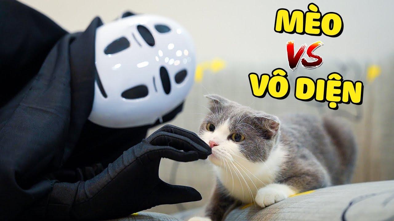 Vô Diện (Ghibli) Xuất Hiện Và Phản Ứng Của Các Bé Mèo  The Happy Pets #71
