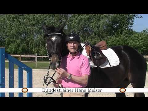 Hans Melzer Horse Equipment