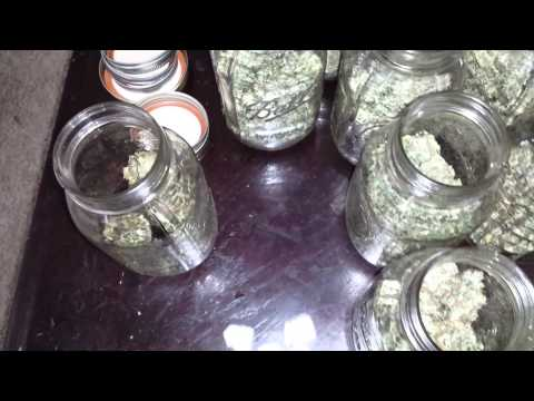 Cannabis curing & re hydrating